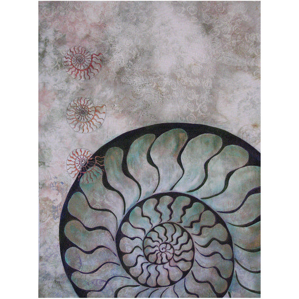 Ammonite Dream