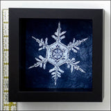 Original Artwork: Framed Beaded Snowflake 4
