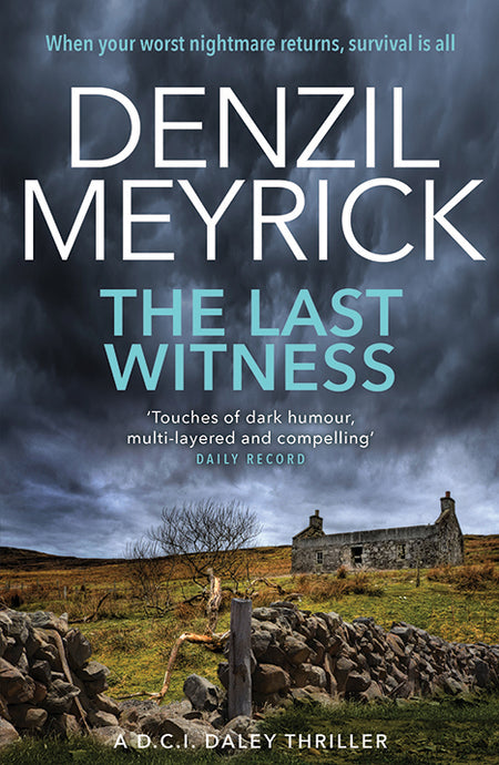 THE LAST WITNESS (Book 2)