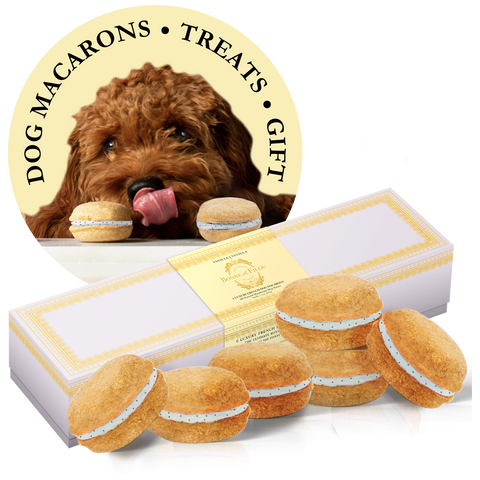 Vanilla Dog Macarons (Box of 6)