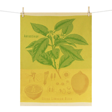 Kitchen Towel – Citrus