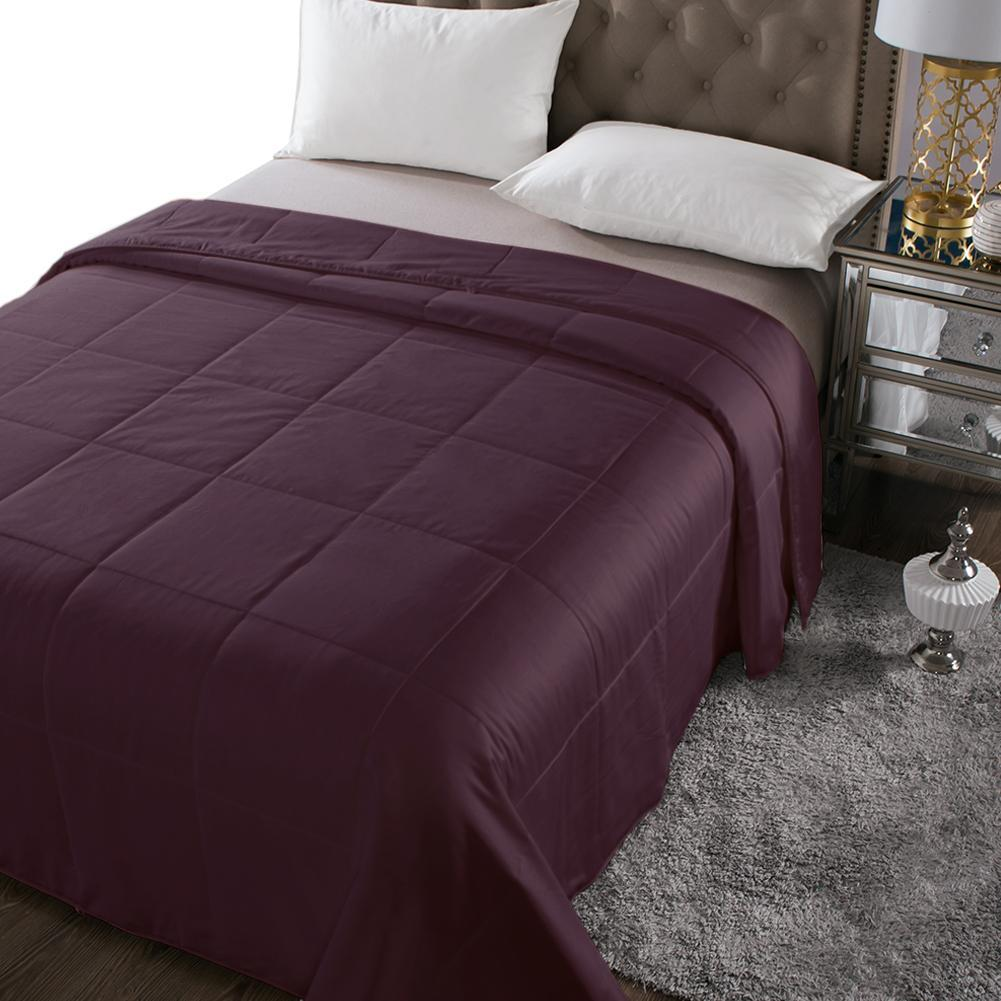Luxury Washable | 100% Mulberry Silk Filled Silk Comforter | Summer | 6 Colors| TAIHU SNOW