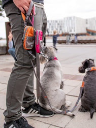 DOG-Copenhagen-laisse-pour-chien-Urban-Trail-Leash-orange