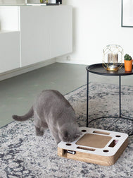 District70-griffoir-carton-pour-chat-design