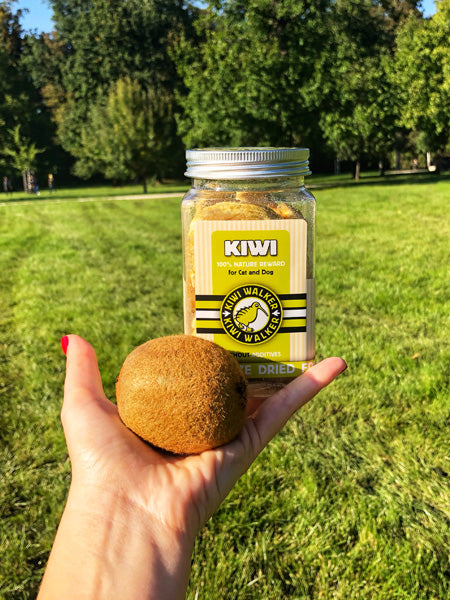 Kiwi-walker-friandises-naturelles-chien-chat-kiwi