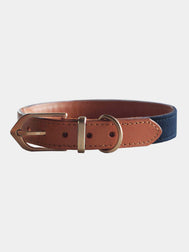 Urban-monster-collier-pour-chien-two-tone-bleu