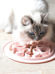 inooko - Slow feeder bowl for cats