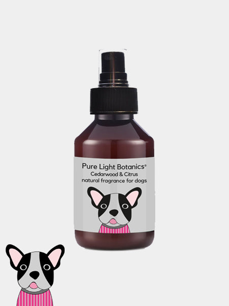 Le parfum Cedarwood and Citrus de Pure Light Botanic for dog