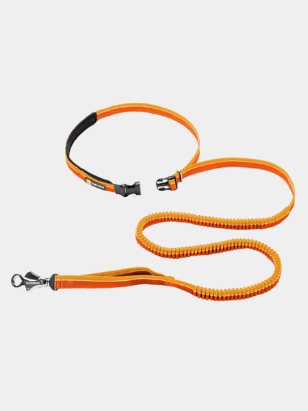 Ruffwear Roamer leash for dog