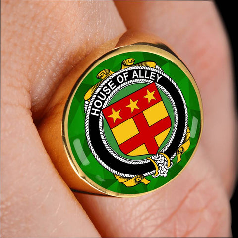 Irish Ring, Alley Family Crest Signet Ring