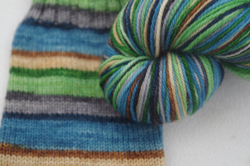 PREORDER: National Simplicity Day - Self Striping Sock Yarn
