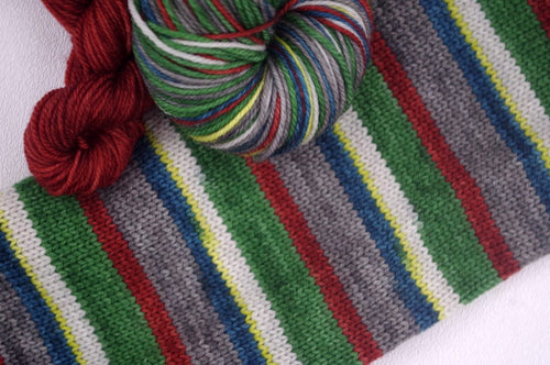 Blowdown at High Falls - Self Striping Sock Yarn