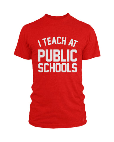 I Teach at Public Schools Hoodie | Black