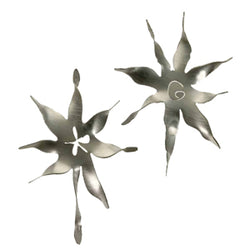 Metallic Evolution Star Ornament