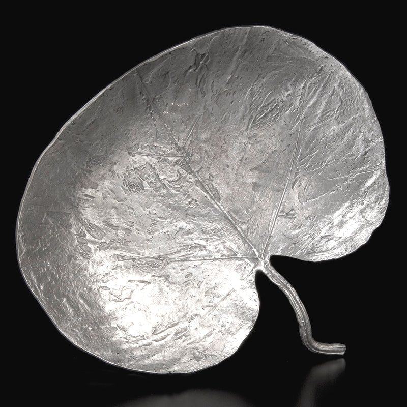 Don Drumm Giant Rounded Leaf