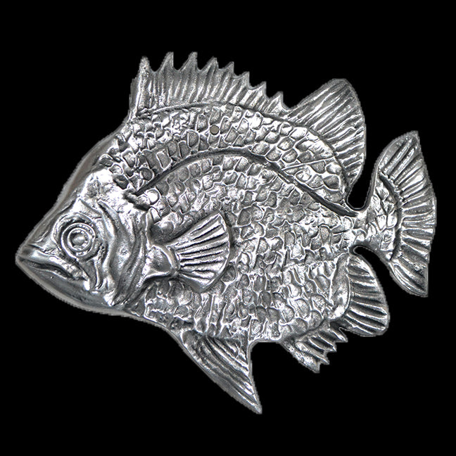 Don Drumm Scat Fish Wall Hanging