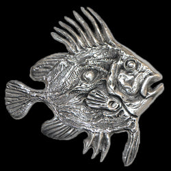 Don Drumm John Dory Fish Wall Hanging