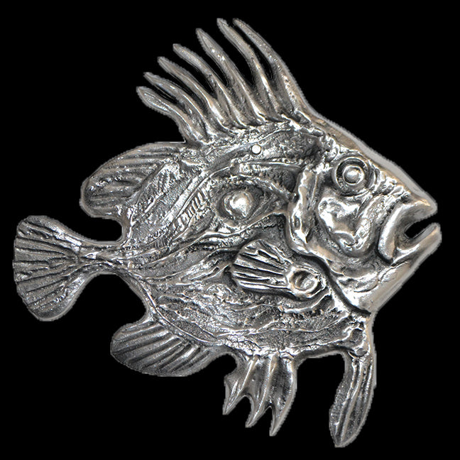 John Dory Fish Wall Hanging