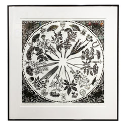 "Joan Colbert ""Herbal Roulette"" Framed Relief Print"