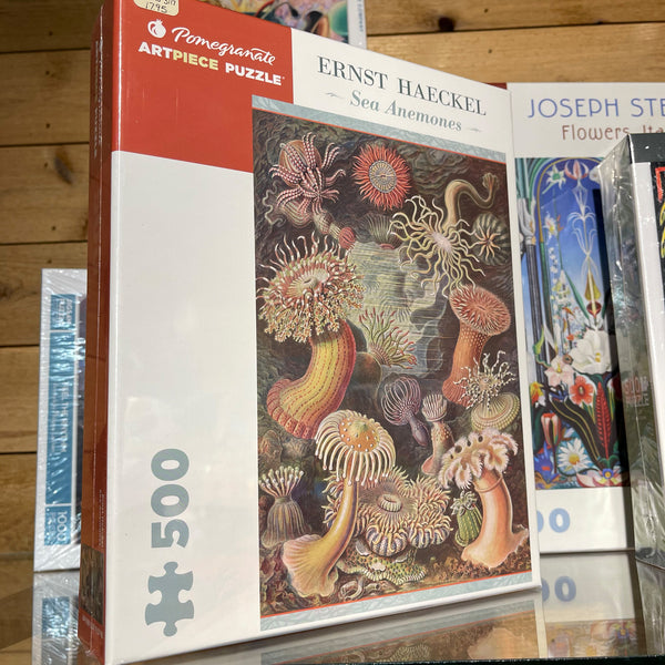 Pomegranate 500pc Puzzle- Ernst Haeckel: Sea Anemones