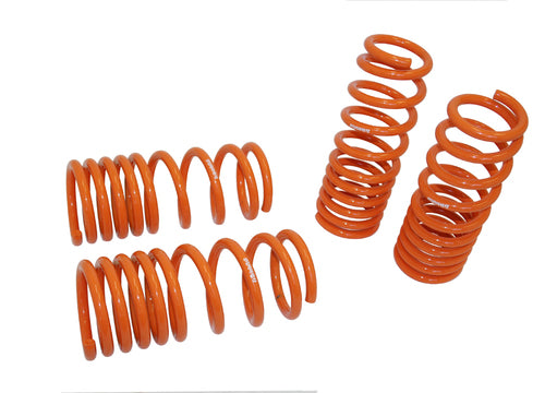 Megan Racing Performance Lowering Springs for 370Z / G37 RWD