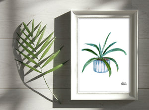 Watercolor Plant Print - Aloe
