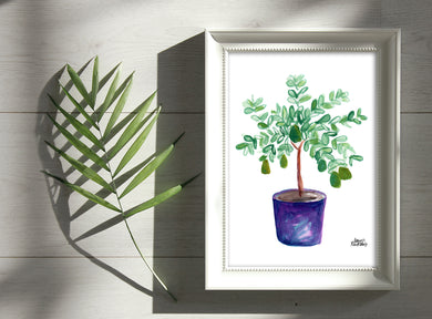 Watercolor Plant Print - Avocado Tree