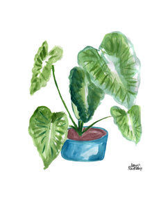 Watercolor Plant Print - Elephant Ears