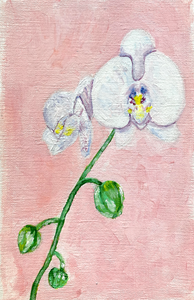 Family Floral Orchid Original Painting - Juana Maria