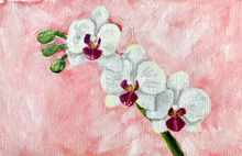 Load image into Gallery viewer, Family Floral Orchid Original Painting - Lucy