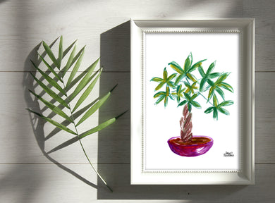 Watercolor Plant Print - Money Tree