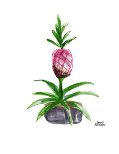 Watercolor Plant Print - Pink Pineapple