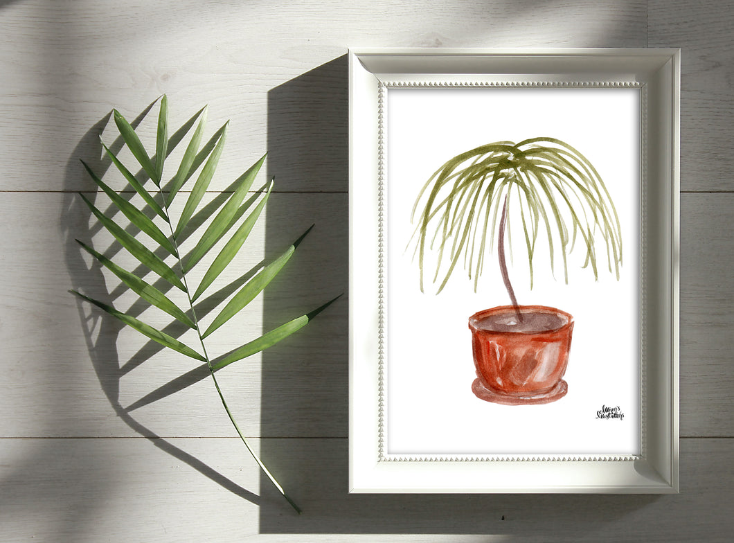Watercolor Plant Print - Ponytail Palm