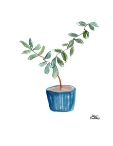 Watercolor Plant Print - Rubber Tree