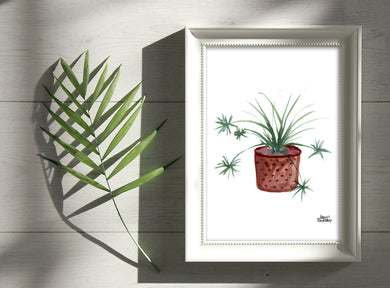 Watercolor Plant Print - Spider Plant
