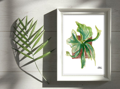 Watercolor Plant Print - Staghorn Fern