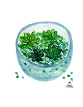 Load image into Gallery viewer, Watercolor Plant Print - Terrarium