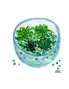 Watercolor Plant Print - Terrarium