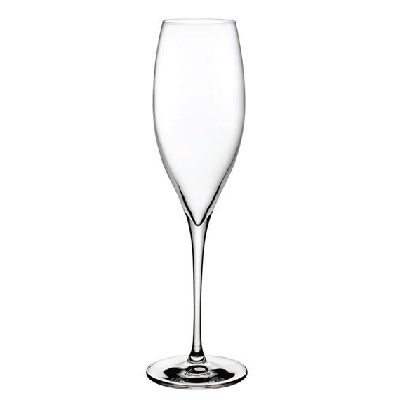Terroir Champagne Glass