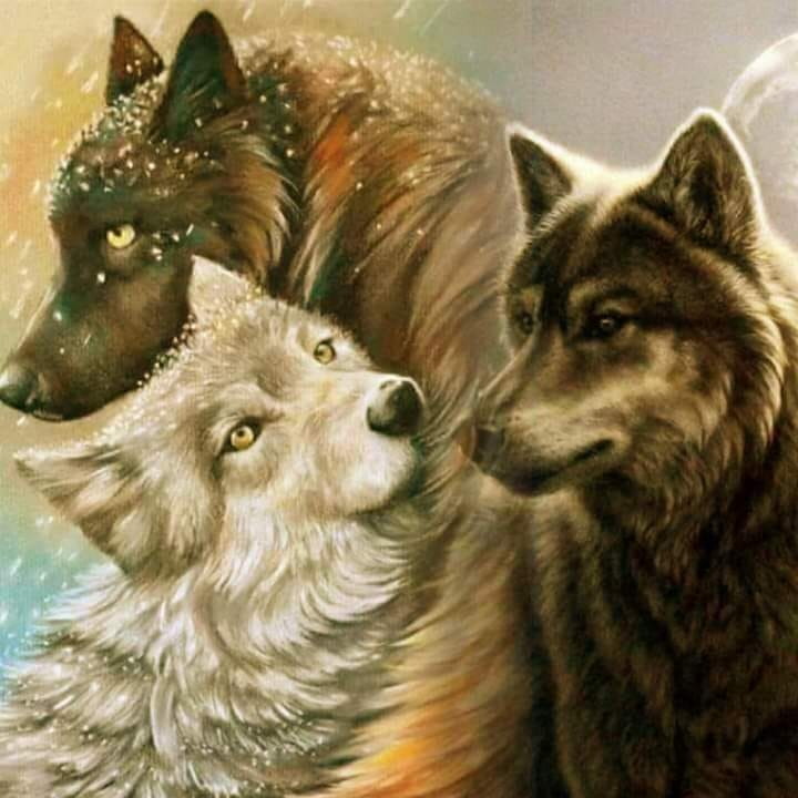 3 Wolven | Diamond Painting