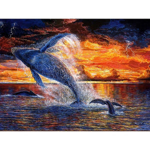 Walvis | Diamond Painting