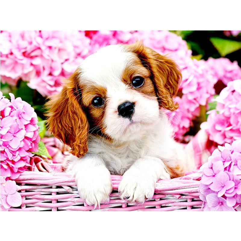 Cavalier King Charles | Diamond Painting