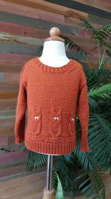 Child's Knitted Owl Sweater