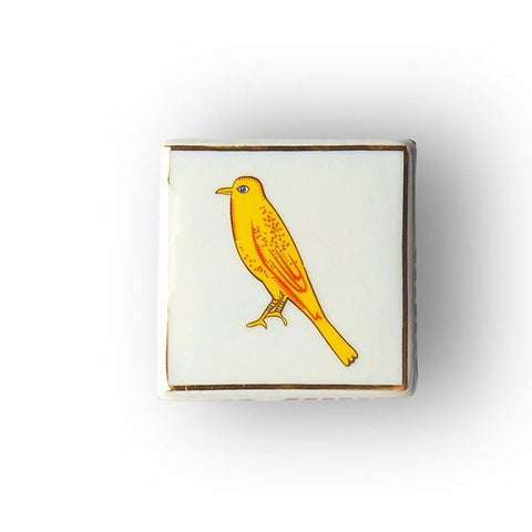 Bird little square box