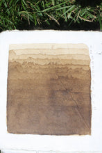 Load image into Gallery viewer, Artist's Walnut Ink *organic*