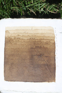 Artist's Walnut Ink *organic*