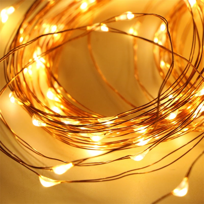 String Lights LED Copper Wire Close Up