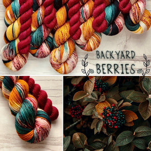 October Yarn club Backyard Berries