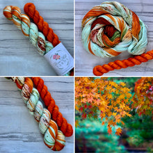 Load image into Gallery viewer, Happy Fall Y'all Half skein set- Fingering
