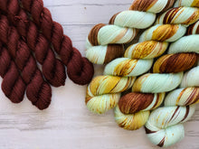 Load image into Gallery viewer, HayDay Half skein set- Fingering